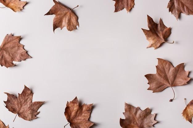 Fundo de outono outono com espaço de cópia de folhas