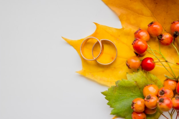 Fundo de outono sazonal criativo. perto das folhas de bordo,
