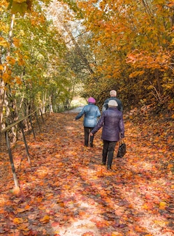 Fundo de outono vertical com folhas de plátano caídas. três idosos caminhando no parque, uma vista de trás.