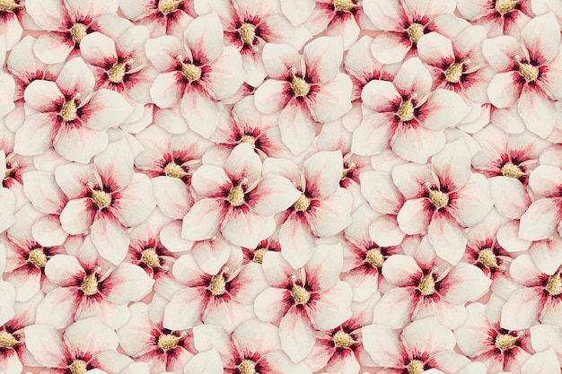 Fundo de padrão de flor de hibisco, remix de obras de arte de megata morikaga