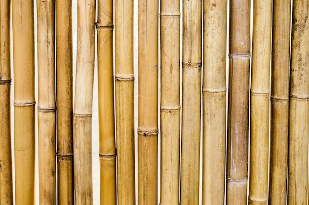 Fundo de padrão de segmento amarelo seco de bambu