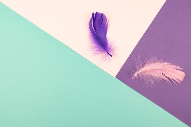 Fundo de papel geométrico abstrato de cores rosa pastel e roxas com pena violeta.