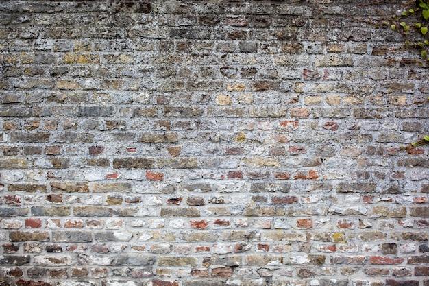 Fundo de parede de tijolos cinza velho