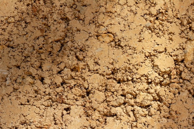 Fundo de parede feita argila argila do molde em uma casa residencial