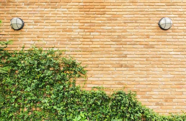 Fundo de parede grunge com folhagem