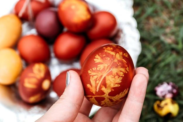 Fundo de páscoa, ovos de galinha e codorna multi-coloridas em fundo natural brilhante.