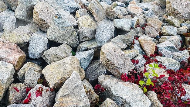 Fundo de pedra com galhos de plantas. galhos com folhas verdes. monte de granito.