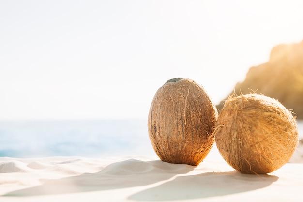 Fundo de praia com coco