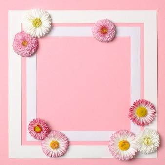 Fundo de primavera com borda frame e margarida flores nos cantos.