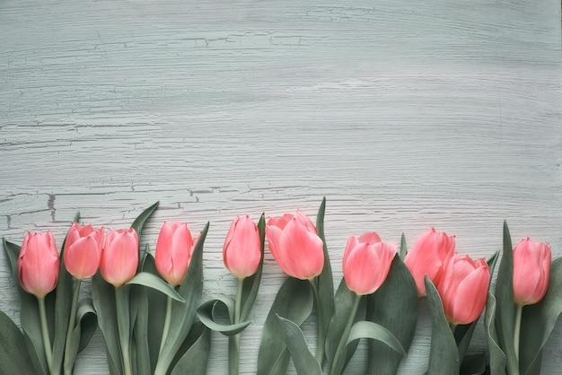 Fundo de primavera com tulipas cor de rosa na madeira texturizada verde clara