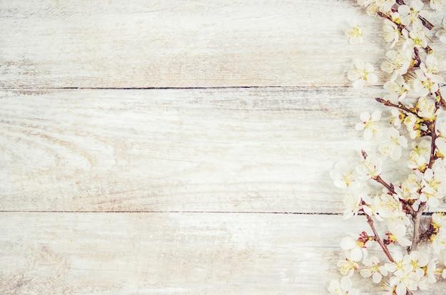 Fundo de primavera, flores e chá. foco seletivo.
