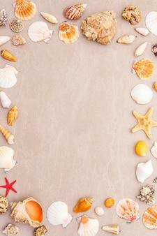 Fundo de quadro de conchas do mar, conceito de férias de verão