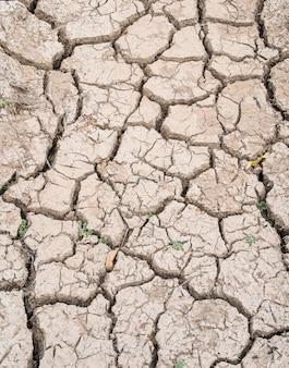 Fundo de rachadura de lama