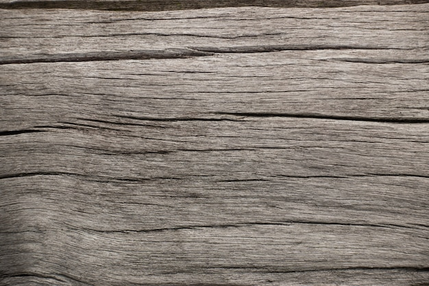 Fundo de rachaduras da superfície da casca de árvore. textura na natureza de madeira.