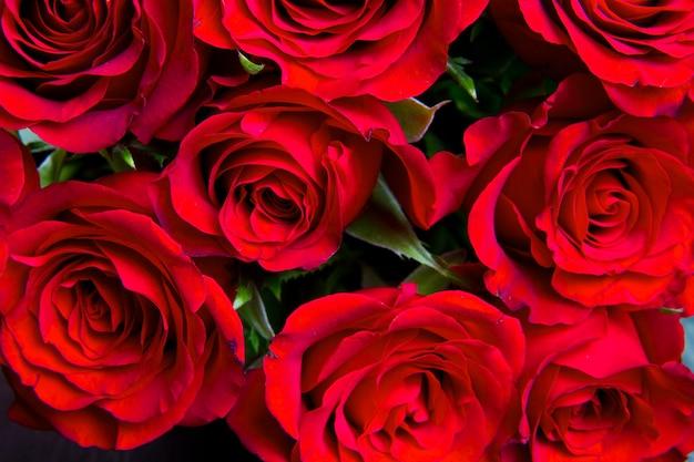 Fundo de rosas naturais vermelhas