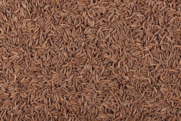 Fundo de sementes de cominho. sementes de cominho ou cominho. vista do topo.