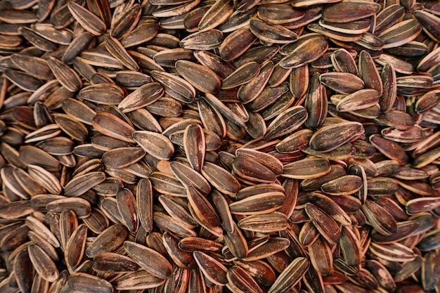 Fundo de sementes orgânicas de girassol