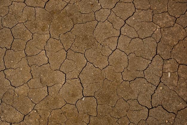 Fundo de solo seco com textura de crack