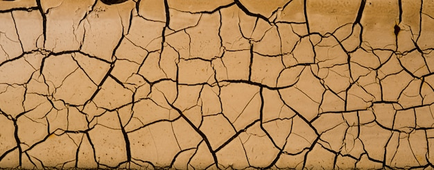 Fundo de solo seco, textura de crack