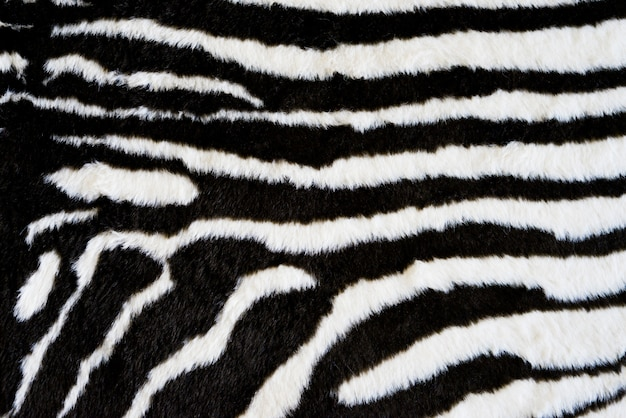 Fundo de tapete de textura de zebra. estampa de animal
