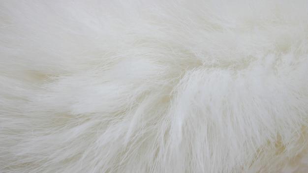 Fundo de tecido branco, pano branco e pele branca macia