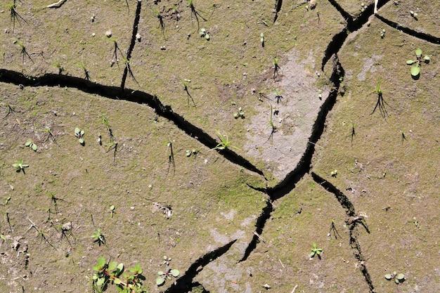 Fundo de terra seca