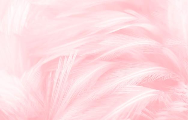 Fundo de textura de belas penas cor de rosa. Foto Premium