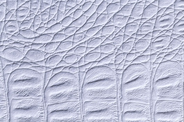 Fundo de textura de couro azul claro