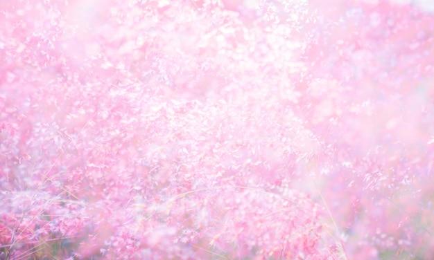 Fundo de textura de flor rosa
