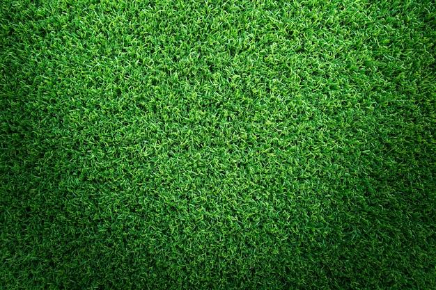 Fundo de textura de grama para campo de golfe