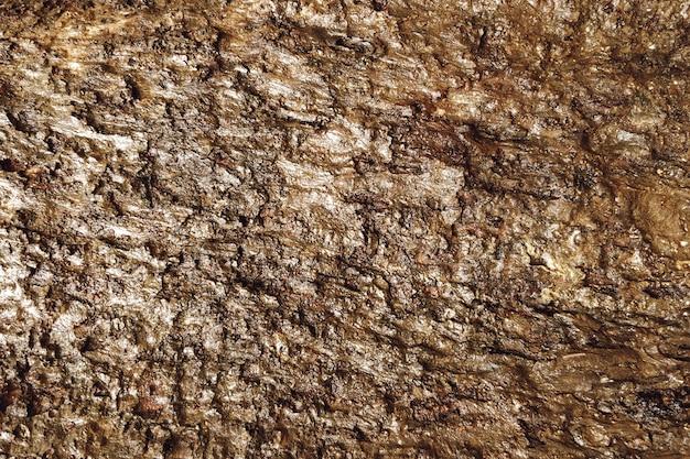 Fundo de textura de lama suja