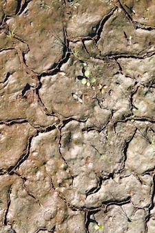 Fundo de textura de lama sujeira