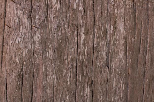 Fundo de textura de madeira antiga do grunge