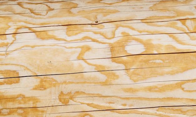 Fundo de textura de madeira de lariço