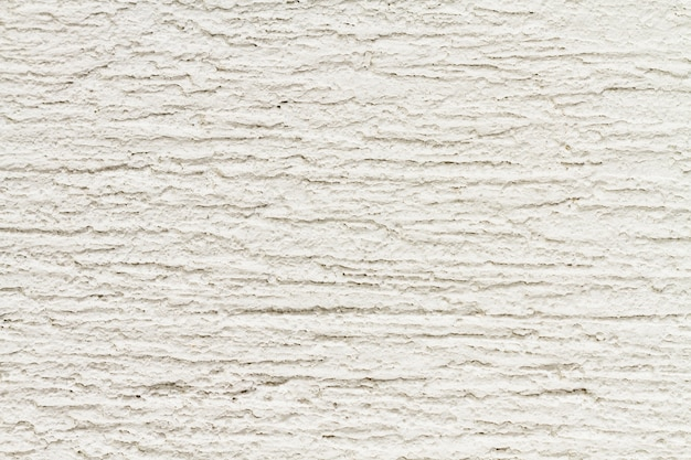 Fundo de textura de madeira velha floresta branca