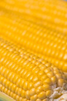 Fundo de textura de milho, milho orgânico fresco