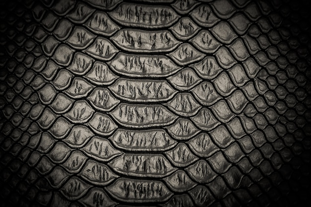 Fundo de textura de padrão de pele de cobra preta