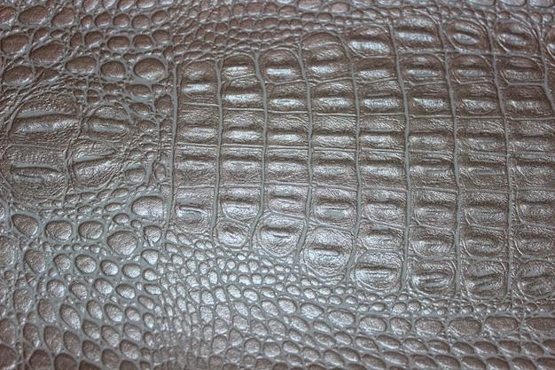 Fundo de textura de pele de anfíbio
