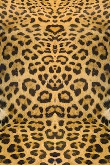 Fundo de textura de pele de leopardo e ocelote