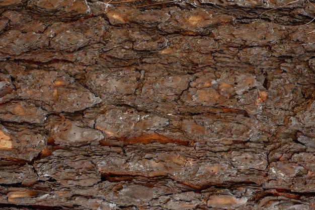 Fundo de textura de piso de madeira marrom