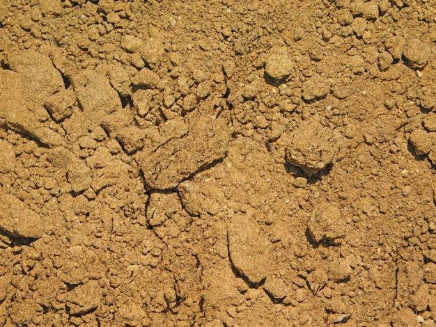 Fundo de textura de solo ao ar livre