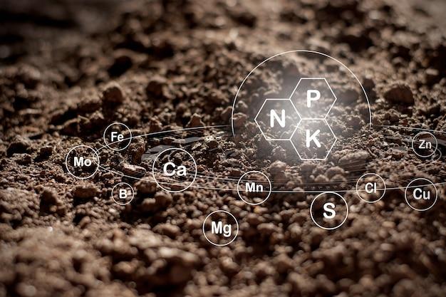 Fundo de textura do solo, solo franco fértil adequado para o plantio.