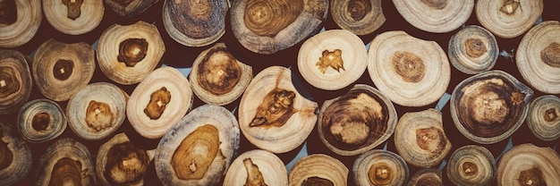 Fundo de toco de madeira natural