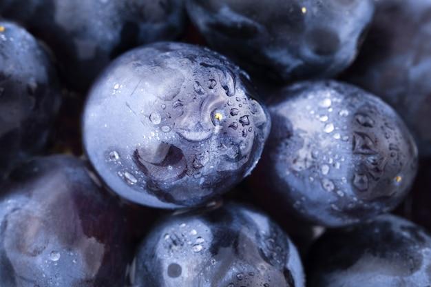 Fundo de uvas azuis escuras em gotas de água
