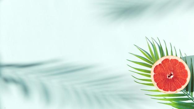 Fundo de verão com folhas de palmeira e sombras