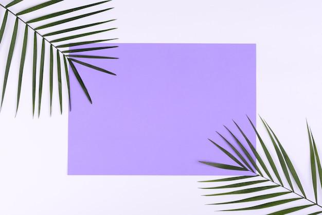 Fundo de verão com folhas tropicais e espaço de cópia