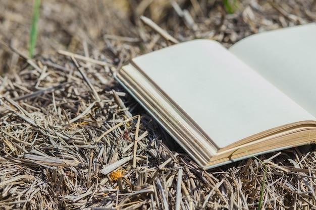 Fundo de verão com livro aberto