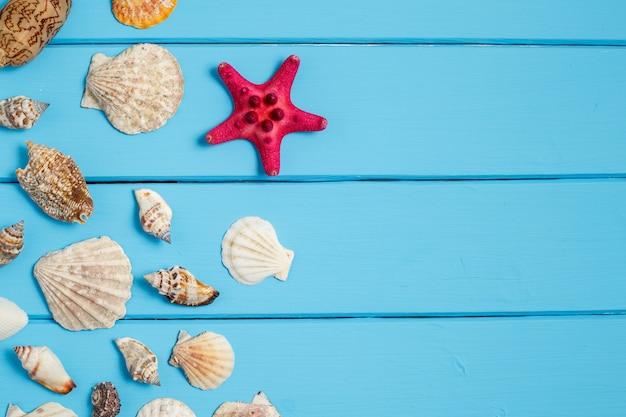 Fundo de verão, conchas sobre fundo azul de madeira