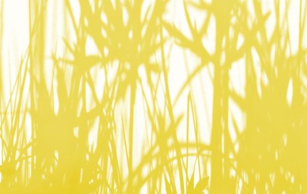 Fundo de verão de sombras ramo folhas em uma parede. cor pantone iluminante