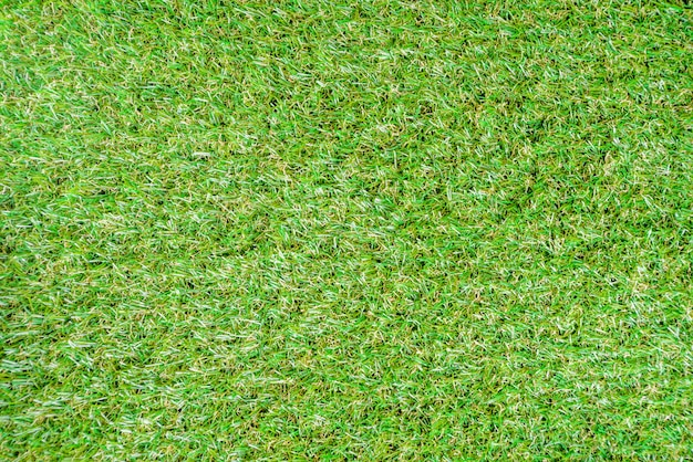 Fundo de verão grama verde
